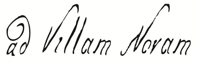 logo_advillamnovam_male