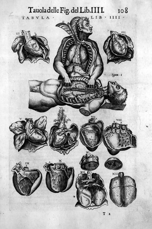 Juan_de_Valverde_La_anatomia_del_corpo_umano_1586.jpg
