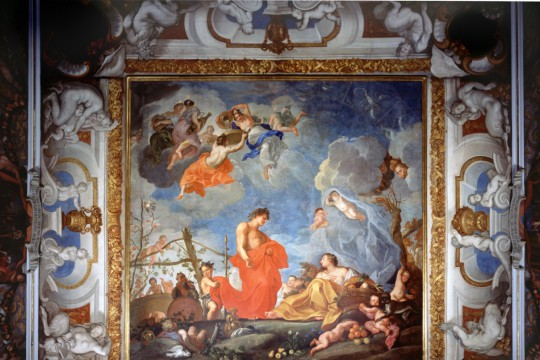 Kolekcja cytrusów króla Jana III