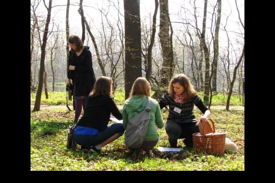 Inwentaryzacja wczesnowiosennych roślin runa. Fot. Julia Dobrzańska.JPG