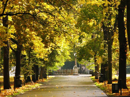 Jesień w ogrodach wilanowskich, fot. J. Dobrzańska01.JPG