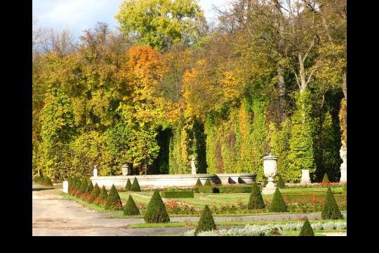 Jesień w ogrodach wilanowskich, fot. J. Dobrzańska04.JPG