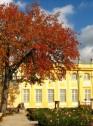 Jesień w ogrodach wilanowskich, fot. J. Dobrzańska15.JPG