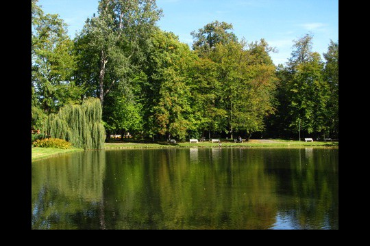 Lato w ogrodach wilanowskich, fot. J. Dobrzańska0101.JPG