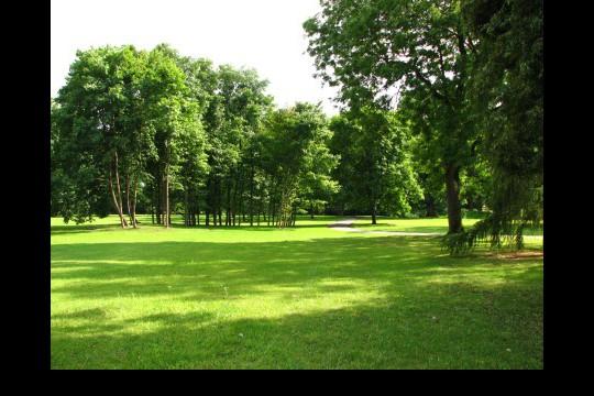 Lato w ogrodach wilanowskich, fot. J. Dobrzańska0112.JPG