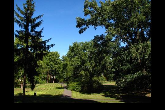 Lato w ogrodach wilanowskich, fot. J. Dobrzańska0113.JPG