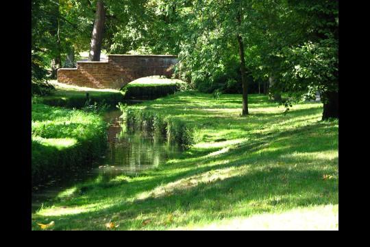 Lato w ogrodach wilanowskich, fot. J. Dobrzańska0114.JPG