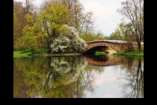 Wiosna w ogrodach wilanowskich, fot. J. Dobrzańska04.JPG
