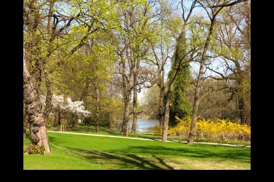 Wiosna w ogrodach wilanowskich, fot. J. Dobrzańska06.JPG