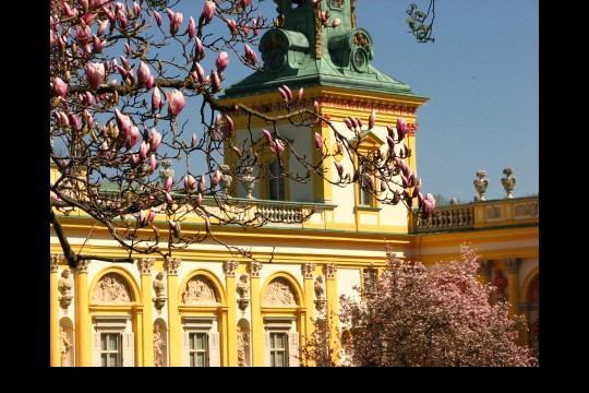 Wiosna w ogrodach wilanowskich, fot. J. Dobrzańska07.JPG