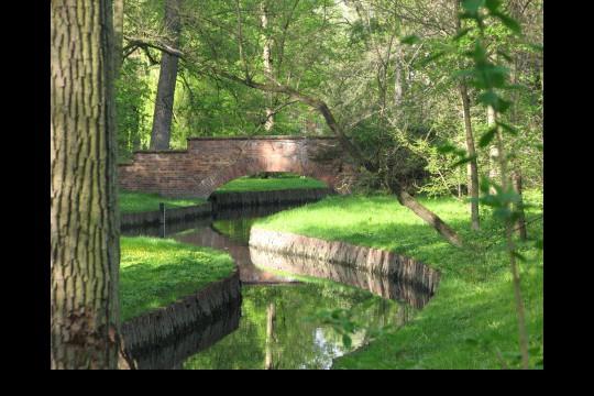 Wiosna w ogrodach wilanowskich, fot. J. Dobrzańska10.jpg