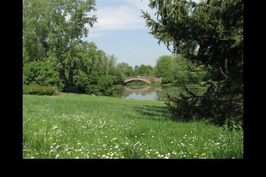 Wiosna w ogrodach wilanowskich, fot. J. Dobrzańska11.JPG
