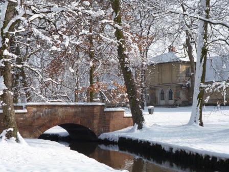 Zima w ogrodach wilanowskich, fot. J. Dobrzańska2.JPG