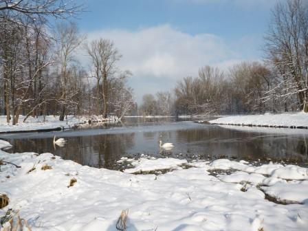 Zima w ogrodach wilanowskich, fot. J. Dobrzańska4.JPG