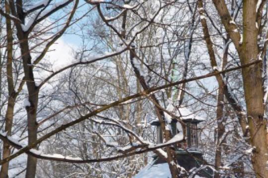 Zima w ogrodach wilanowskich, fot. J. Dobrzańska6.JPG
