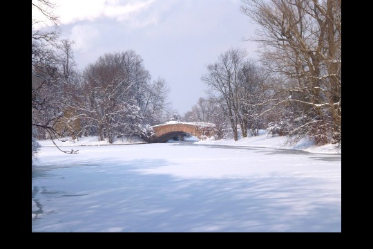 Zima w ogrodach wilanowskich, fot. J. Dobrzańska7.JPG