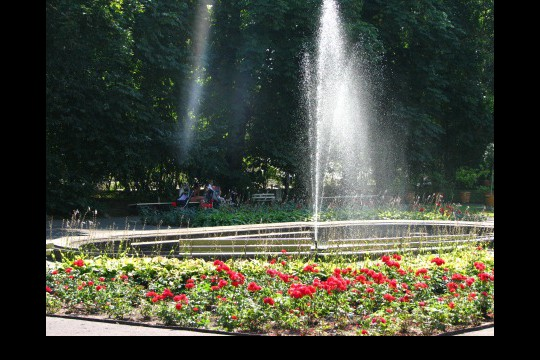 Galeria ogrodowa, fot. J. Dobrzańska (1).JPG