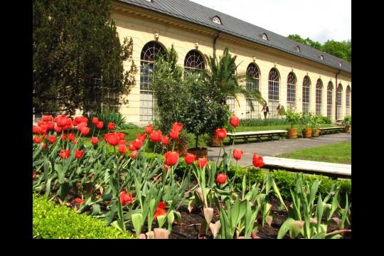 Galeria ogrodowa, fot. J. Dobrzańska (6).JPG