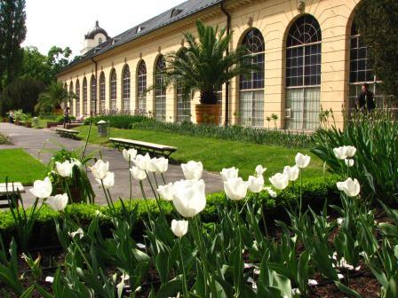 Galeria ogrodowa, fot. J. Dobrzańska (8).JPG