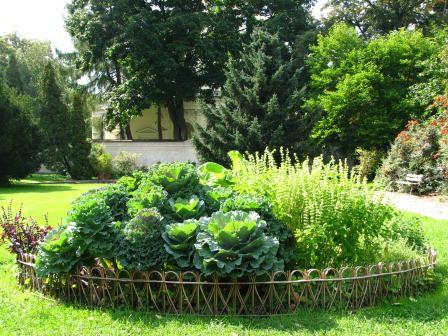 Galeria ogrodowa, fot. J. Dobrzańska (18).JPG