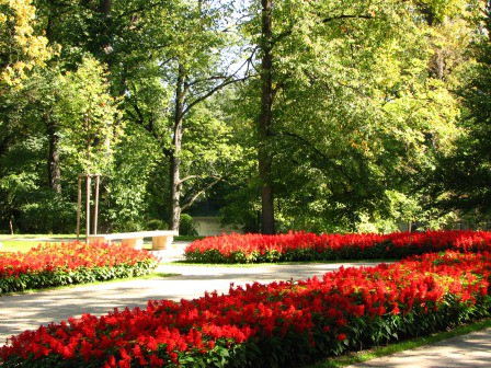 Galeria ogrodowa, fot. J. Dobrzańska (26).JPG