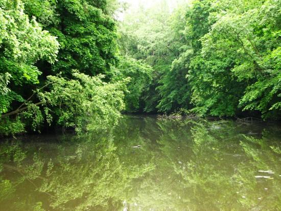 8.Kanal Sobieskiego.JPG