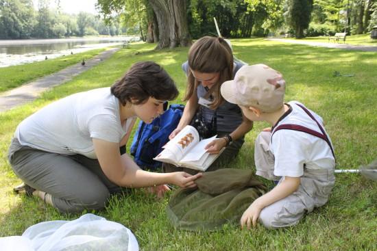 WKP_Przy pomocy atlasu oznaczamy gatunki motyli. Fot. Katarzyna Konik.JPG