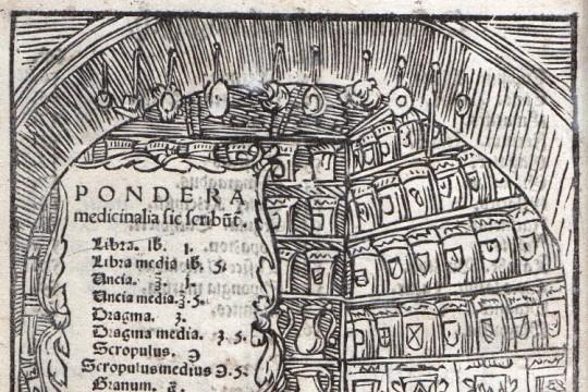 Botanicy i kolekcjonerzy w XVII wieku