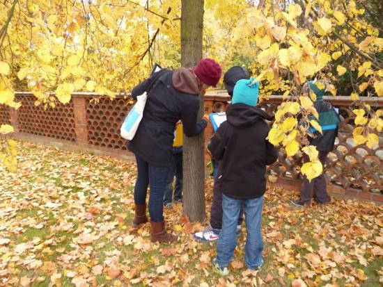 Badacze przyrody 2013_O czym szumią drzewa. fot. Julia Dobrzańska.JPG