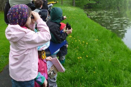 Badacze przyrody 2013_Wiosenny ptaków śpiew. fot. Julia Dobrzańska.JPG