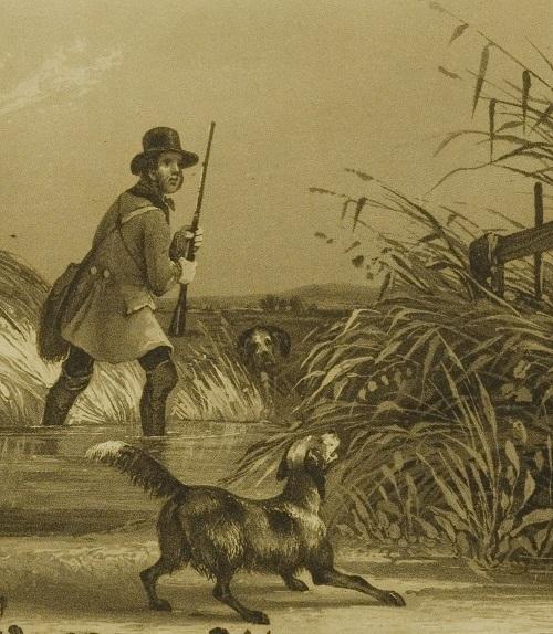 polowanie na dzikie kaczki_fragm_myśliwy_pies_BN.jpg