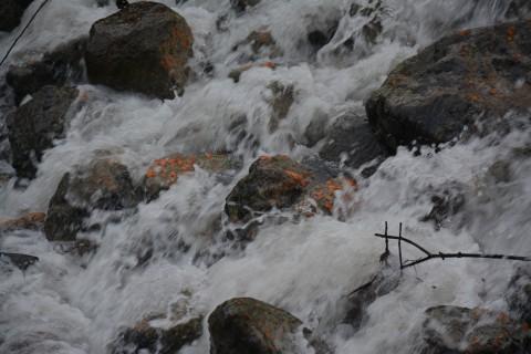 Kamienie kaskady na potoku z widocznymi pomarańczowymi  osadami biofilmu, fot. A Laudy.JPG