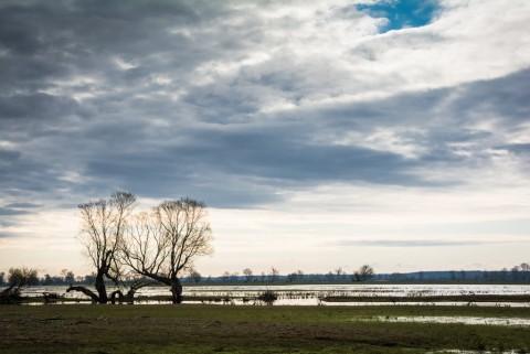 Park Narodowy Ujście Warty, fot. Monika Klimowicz