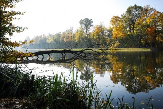 Jezioro Wiilanowskie, fot. Monika Klimowicz