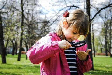Przyrodnicze obserwacje w ogrodach. Fot. Monika Klimowicz.jpg