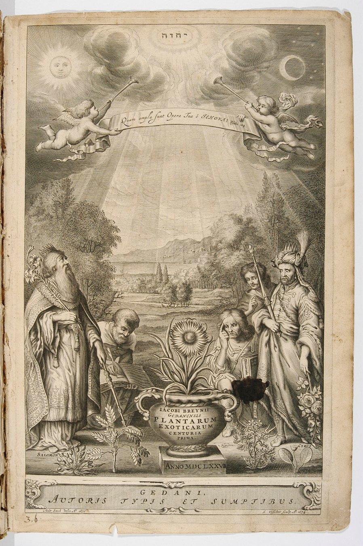44_karta tytulowa sztychowana do dziela botanicznego breyne a.jpg