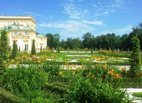 Liliowce - górny taras ogrodu barokowego. Fot. Julia Dobrzańska.jpg