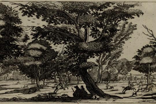 Postrzeganie przyrody w czasach saskich na przykładzie korespondencji Elżbiety Sieniawskiej