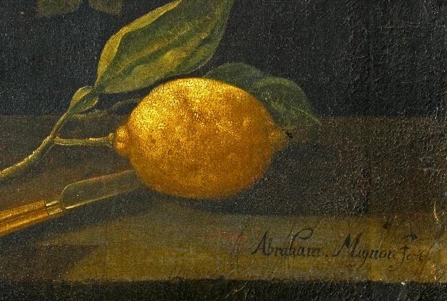 57_wil.1683-martwa natura mignon cytryna.jpg