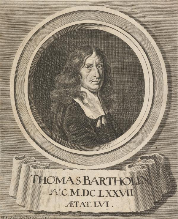 Thomas Bartholin Polona WWW.jpg