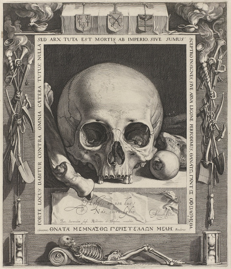 vanitas czaszka.jpg