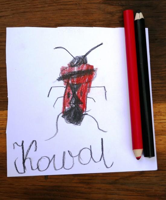 Zadanie dla przyrodnika1.5. Kowal narysowany przez Emilkę lat 7,5. Fot. J. Dobrzańska.JPG