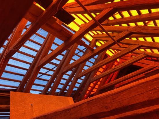 IMG_0454 www W. Bagiński.jpg