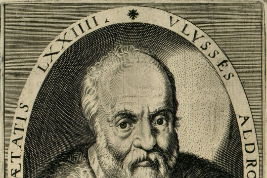 Kolekcja Ulissesa Aldrovandiego i jej polskie eksponaty