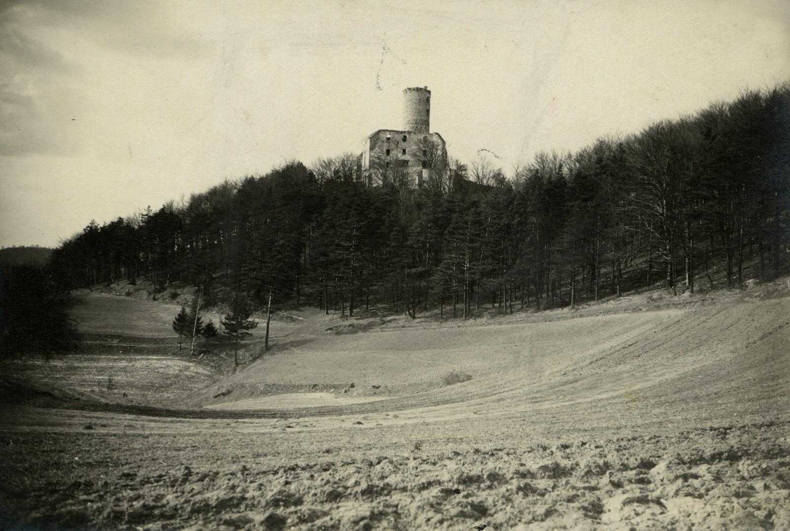Zamek Lipowiec od południa