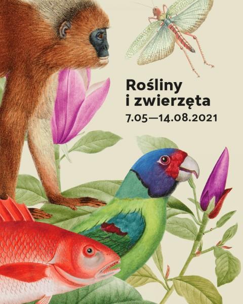 Rośliny i zwierzęta wystawa www pion.png
