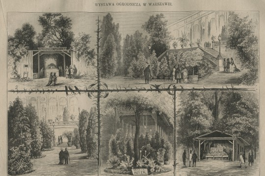 Wilanowska kolekcja oranżeryjna na wystawach w 2. poł. XIX wieku