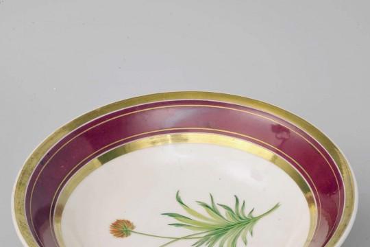 Patera z zawilcem (Anemone hortensis)