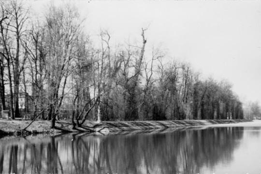Jesienne drzewa bez liści w parku wilanowskim nad brzegiem Jeziora Wilanowskiego.