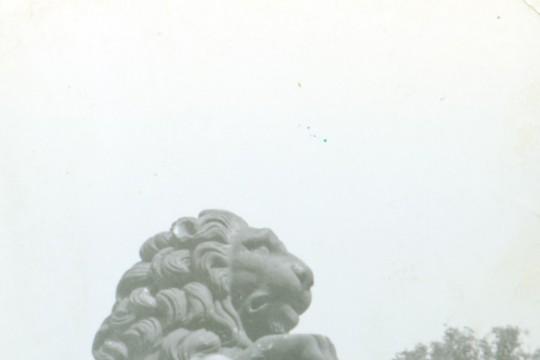 Uśmiechnięta dziewczynka obok rzeźby lwa i herbu Pilawa. Lew przednimi łapami wspiera się na tarczy herbowej.  Dziewczynka stoik obok lwa i wychyla się zza tarczy.